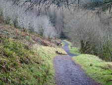 Footpath In Glenariff Forest Park Royalty Free Stock Image