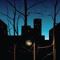 Free Night Landscape Royalty Free Stock Photo - 30241975