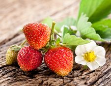 Free Strawberries With Leaves Stock Photo - 30242170
