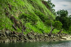 Free Shore Of A Small Island Stock Photography - 30262252