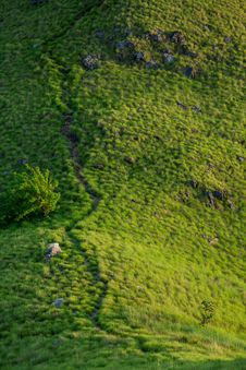 Free Green Trail On The Hill Stock Photography - 30262402