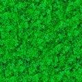 Free Seamless Texture. Grass. Stock Photography - 30272552