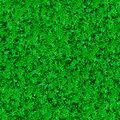 Free Seamless Texture. Green Meadow Grass. Royalty Free Stock Image - 30274016
