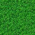 Free Seamless Texture. Green Meadow Grass. Stock Photo - 30274060
