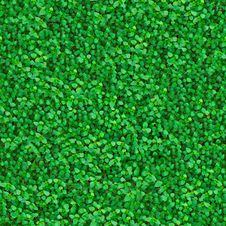 Free Green Meadow Grass. Seamless Texture. Stock Photography - 30272642