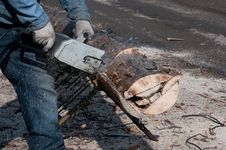 Cutting Wood For Firewood Stock Images