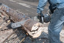 Cutting Wood For Firewood Stock Photography