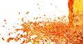 Free Orange Splash Royalty Free Stock Photography - 30282117