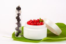 Black And Red Currant Cosmetics Royalty Free Stock Image