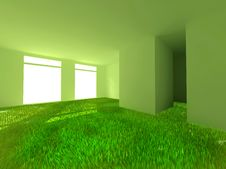 Free Grass In Room Royalty Free Stock Images - 30282029