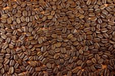 Free Coffee Beans. Royalty Free Stock Photography - 30282247