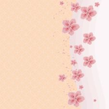Free Background With Cherry Blossom Stock Photo - 30289630