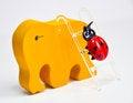 Free Colorful Ladybug Stock Images - 30293254