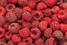 Free Large Mass Of Fresh Ripe Red Raspberry Royalty Free Stock Images - 30294979