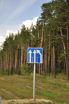 Free A Road Sign In A Forest. Royalty Free Stock Photos - 30295558