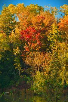 Free Autumn Colors Stock Photos - 3033403