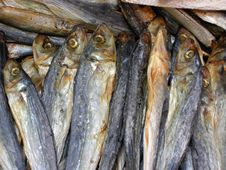 Free Dry Fish Royalty Free Stock Photos - 3036308