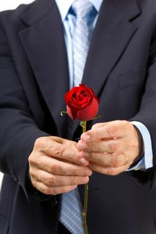 Free Man Giving Rose Stock Photo - 3039600