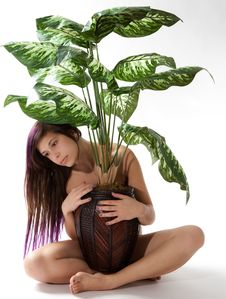 Implied Nude With Plant Stock Image