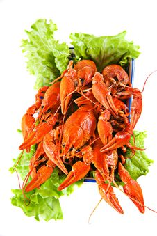 Free Lobsters With Salad Stock Image - 30314531