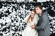 Free Happy Bride And Groom In Winter Day Royalty Free Stock Image - 30337626
