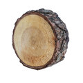 Free Stump Stock Images - 30353144