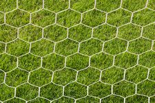 Free Back Side The Goal Football Stock Photo - 30350710