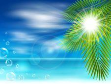 Free Sunny Beach Stock Photography - 30370342