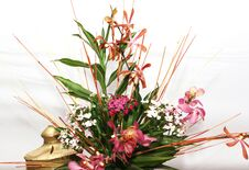 Free Display Of Fresh Flowers Stock Photos - 30372503
