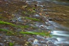 Free Flowing Water In The Creek Stock Image - 30376271