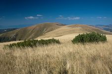 Free Mountains Of Slovakia Royalty Free Stock Images - 30376319