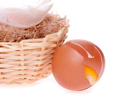 Free Egg Broken On The Background Of Nests Stock Photo - 30378750