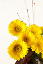 Free Bouquet Of Yellow And White  Flowers Royalty Free Stock Photography - 30385837