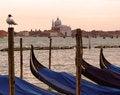 Free Venice Gondolas Royalty Free Stock Image - 30394696