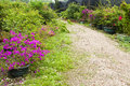 Free Garden Path Royalty Free Stock Photos - 30399438