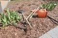 Free Garden Tools Stock Photo - 30399650