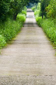 Free Garden Path Royalty Free Stock Photography - 30399827