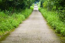Free Garden Path Royalty Free Stock Photos - 30399828