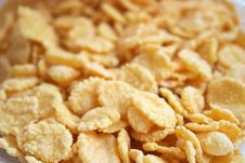 Free Corn-flakes Royalty Free Stock Images - 3040989