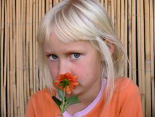 Girl Smelling  A  Flower Stock Images