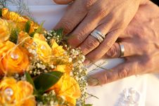 Free Ring Hands Stock Image - 3044681