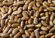 Free Heap Of Beans Stock Photo - 3045130