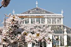 Spring In Kew Gardens, UK Royalty Free Stock Photos