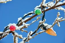 Free Christmas Bulbs Royalty Free Stock Photos - 30400058