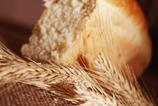 Free Bread And Wheat Ears Royalty Free Stock Image - 30404756
