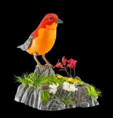 Free MECHANICAL TOY BIRD Stock Photos - 30405043