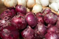 Free Red And White Onions On Flea Market Shelf Display Royalty Free Stock Image - 30406646