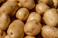 Close Up Of Big White Potatoes Royalty Free Stock Photos