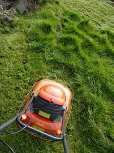 Free Cutting The Grass Royalty Free Stock Photo - 30412025