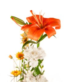 Beautiful Bouquet Of Lily And White Flower Stock Image